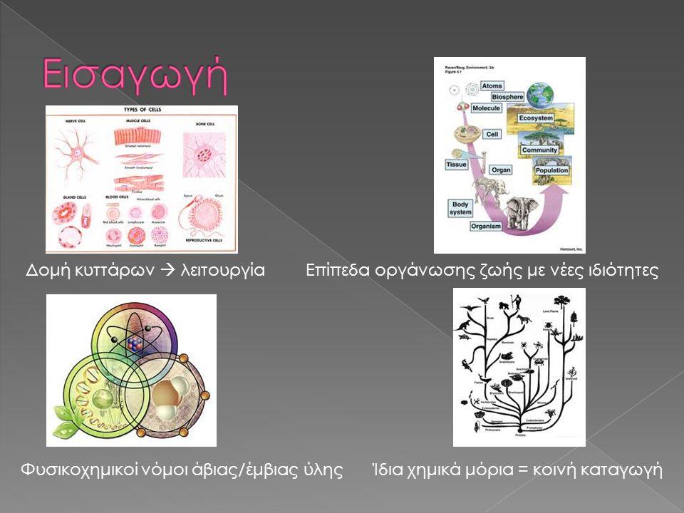 Εισαγωγή Δομή κυττάρων  λειτουργία