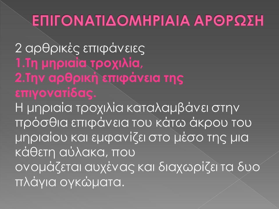 ΕΠΙΓΟΝΑΤΙΔΟΜΗΡΙΑΙΑ ΑΡΘΡΩΣΗ
