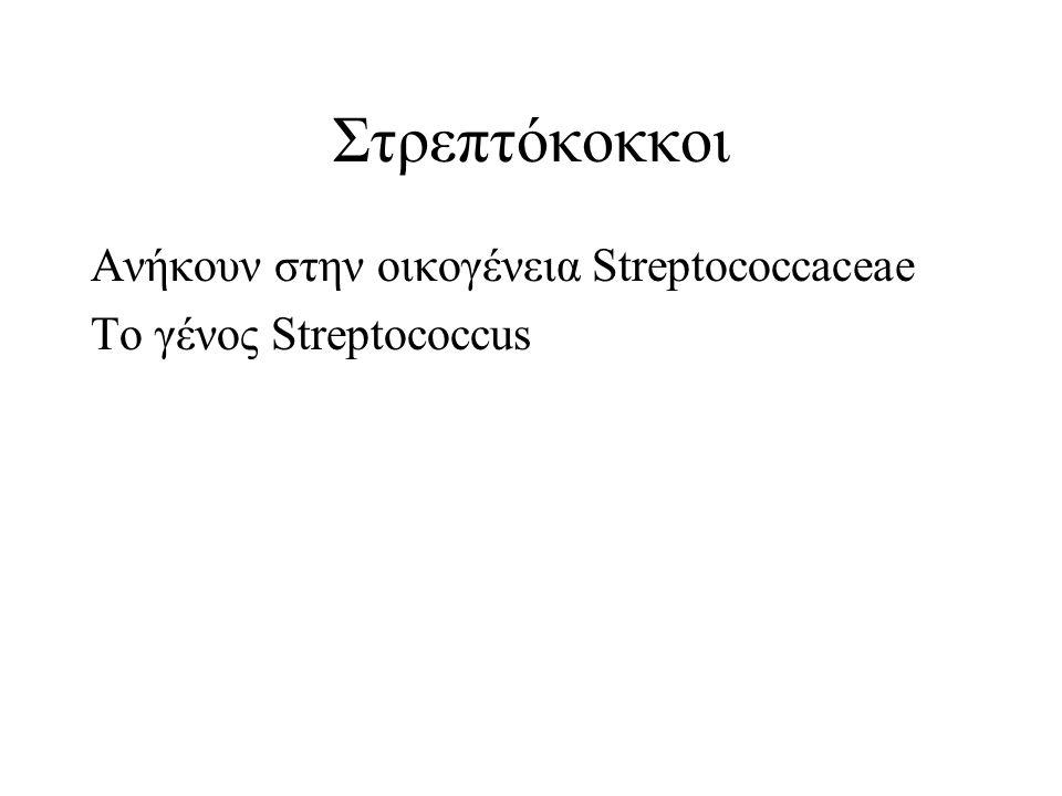 Στρεπτόκοκκοι Ανήκουν στην οικογένεια Streptococcaceae