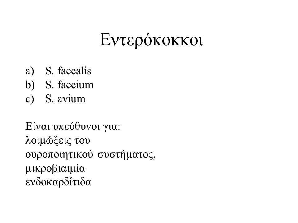Εντερόκοκκοι S. faecalis S. faecium S. avium Είναι υπεύθυνοι για: