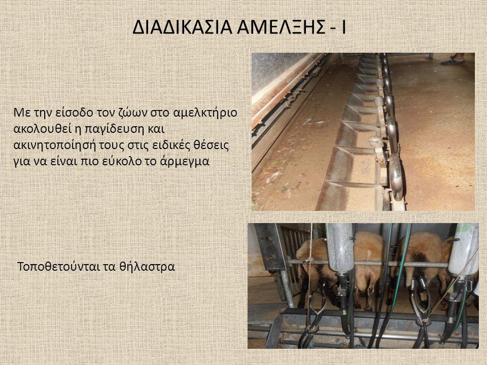 ΔΙΑΔΙΚΑΣΙΑ ΑΜΕΛΞΗΣ - Ι