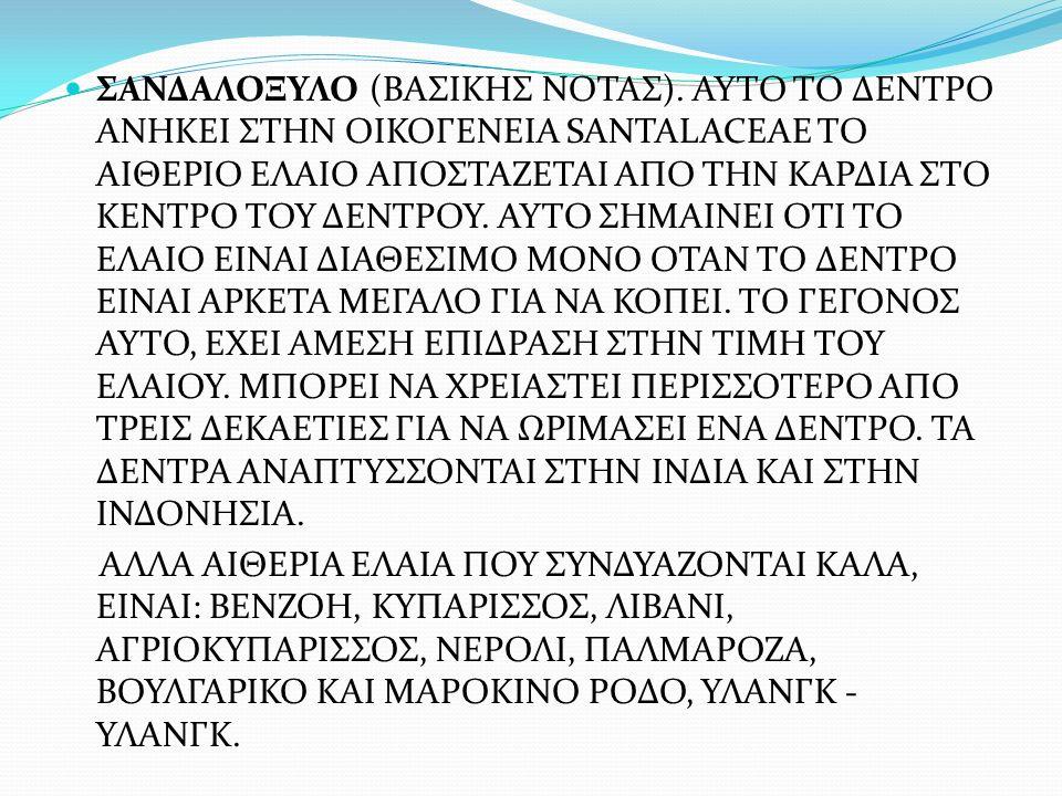 ΣΑΝΔΑΛΟΞΥΛΟ (ΒΑΣΙΚΗΣ ΝΟΤΑΣ)
