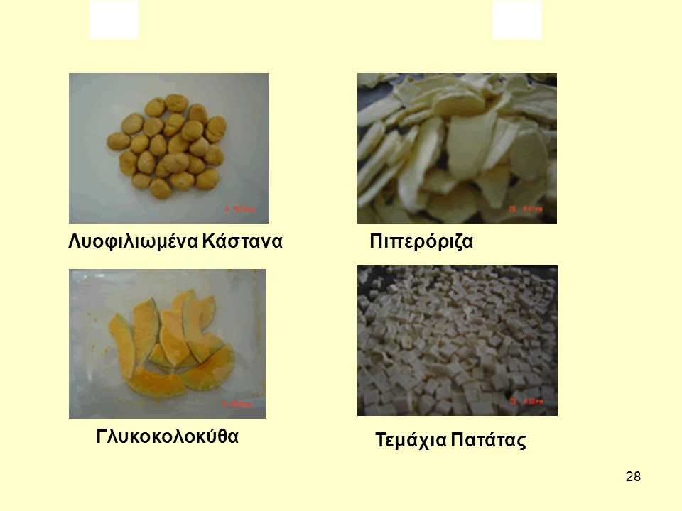 Λυοφιλιωμένα Κάστανα Πιπερόριζα