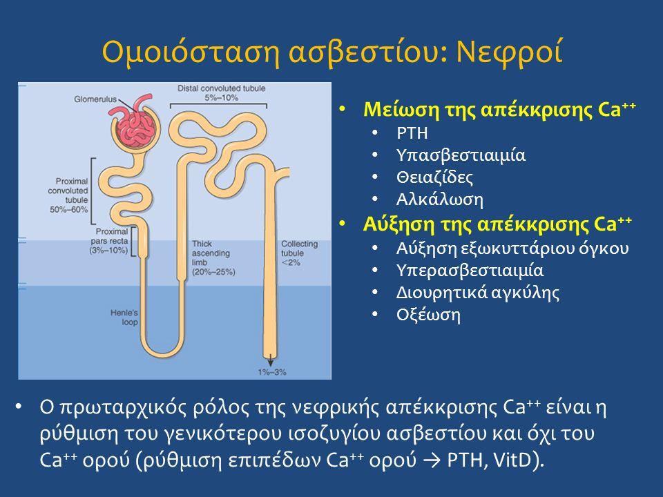 Ομοιόσταση ασβεστίου: Νεφροί