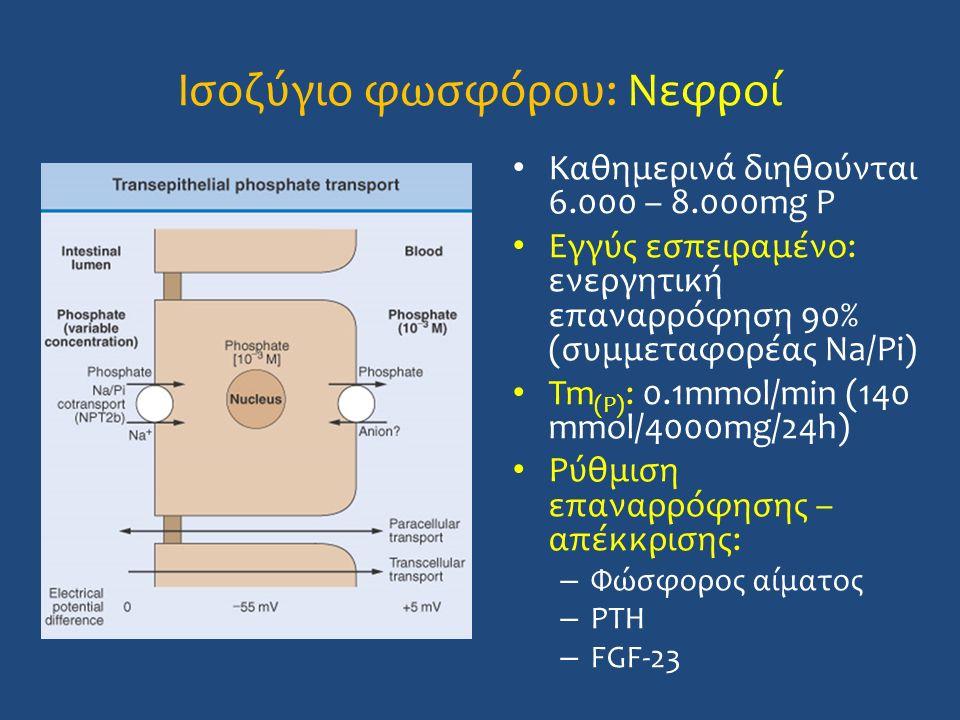 Ισοζύγιο φωσφόρου: Νεφροί