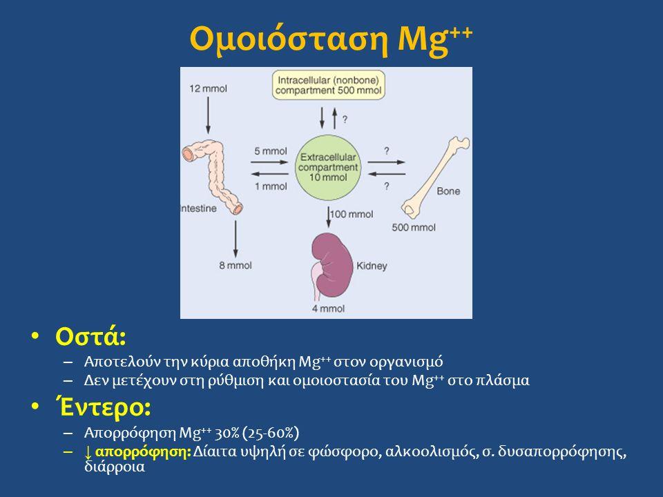 Ομοιόσταση Mg++ Οστά: Έντερο: