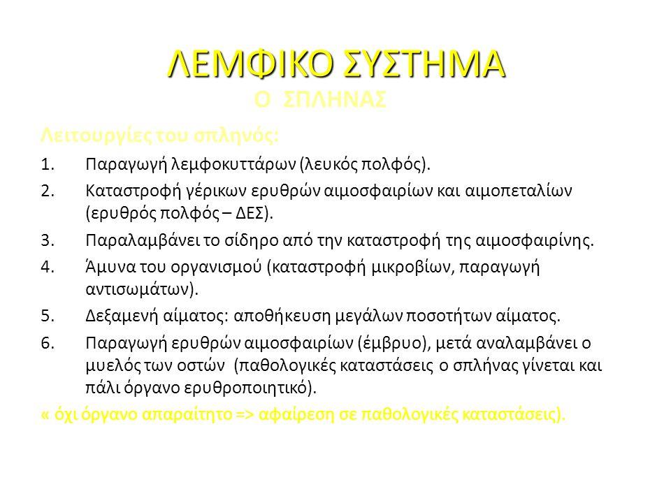 ΛΕΜΦΙΚΟ ΣΥΣΤΗΜΑ Ο ΣΠΛΗΝΑΣ Λειτουργίες του σπληνός: