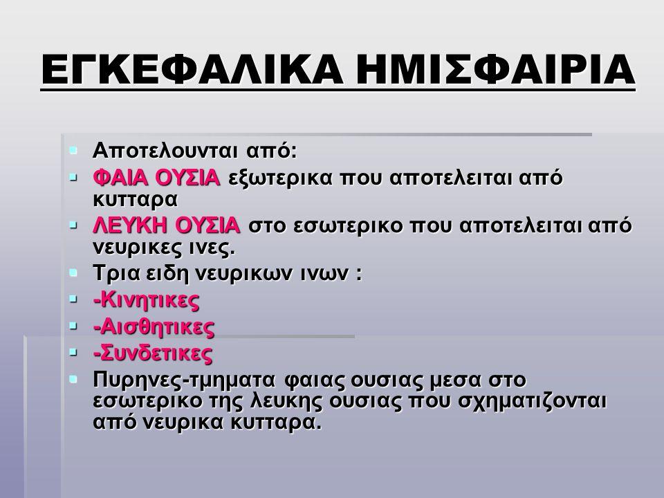 ΕΓΚΕΦΑΛΙΚΑ ΗΜΙΣΦΑΙΡΙΑ