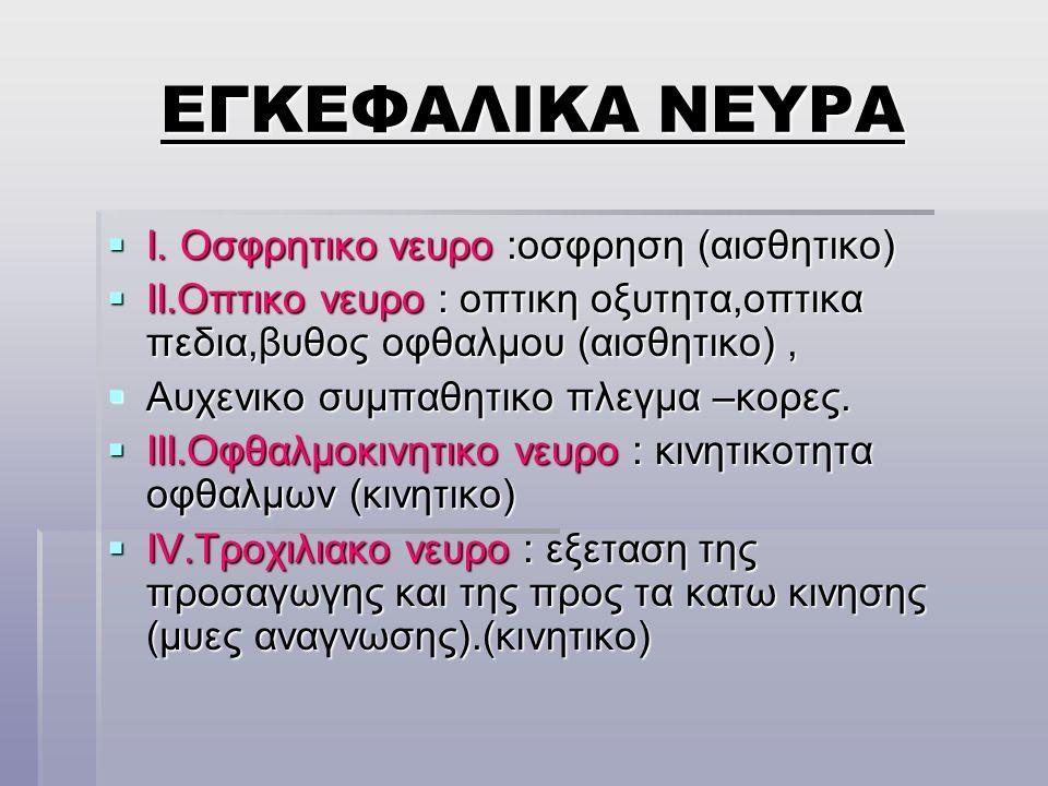 ΕΓΚΕΦΑΛΙΚΑ ΝΕΥΡΑ I. Οσφρητικο νευρο :οσφρηση (αισθητικο)