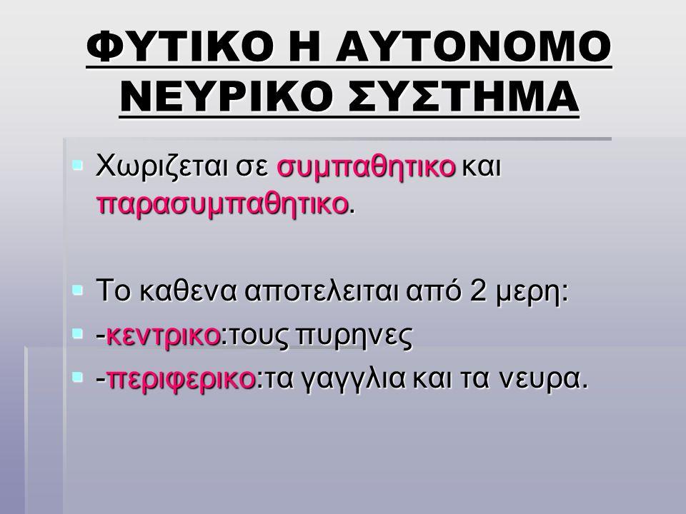 ΦΥΤΙΚΟ Η ΑΥΤΟΝΟΜΟ ΝΕΥΡΙΚΟ ΣΥΣΤΗΜΑ