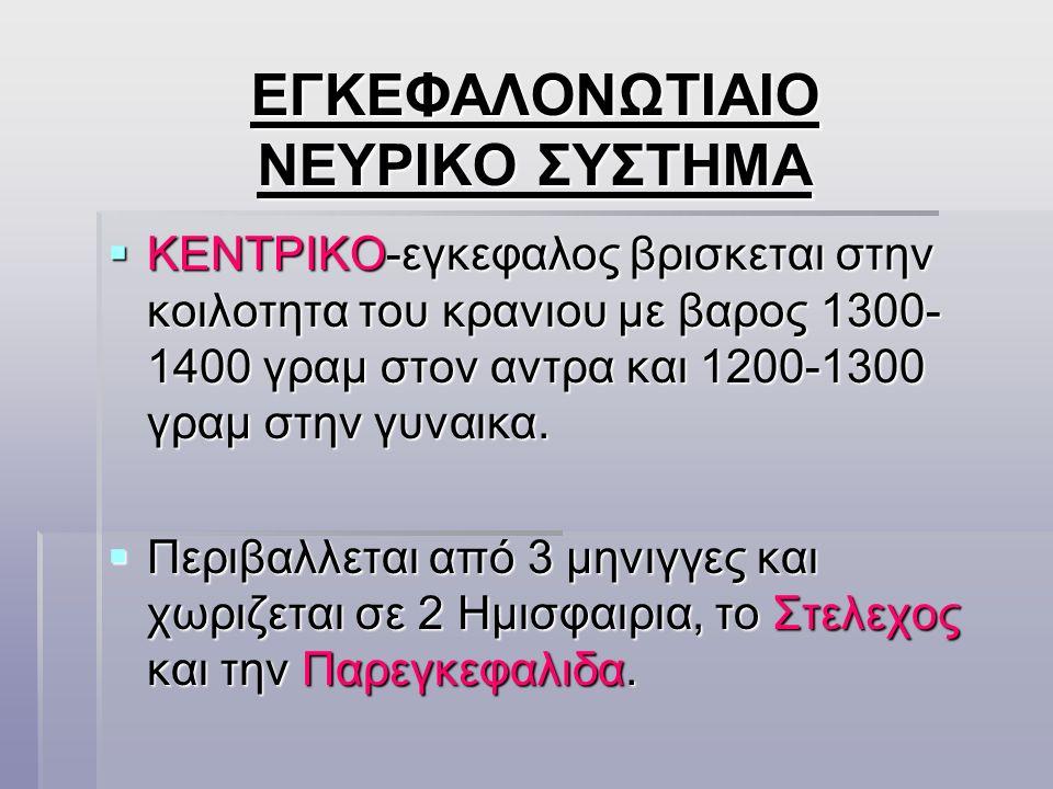 ΕΓΚΕΦΑΛΟΝΩΤΙΑΙΟ ΝΕΥΡΙΚΟ ΣΥΣΤΗΜΑ