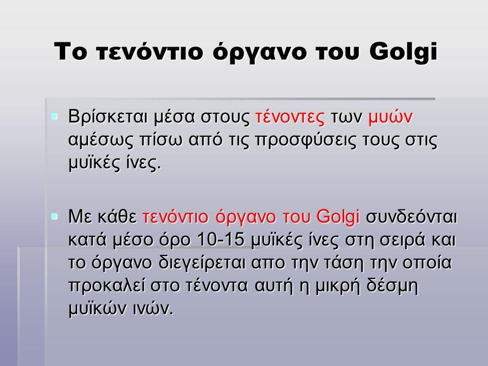 Το τενόντιο όργανο του Golgi