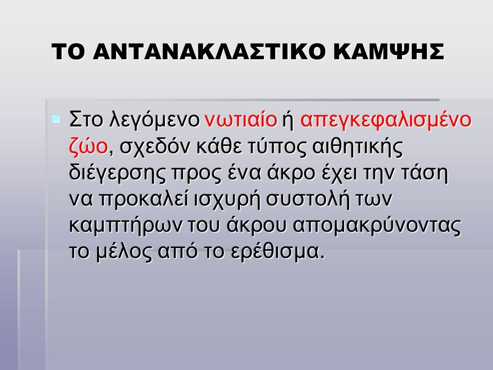 ΤΟ ΑΝΤΑΝΑΚΛΑΣΤΙΚΟ ΚΑΜΨΗΣ