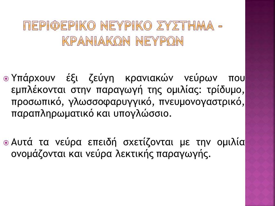 ΠΕΡΙΦΕΡΙΚΟ ΝΕΥΡΙΚΟ ΣΥΣΤΗΜΑ - ΚΡΑΝΙΑΚΩΝ ΝΕΥΡΩΝ