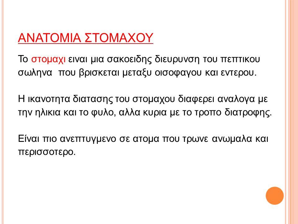 ΑΝΑΤΟΜΙΑ ΣΤΟΜΑΧΟΥ