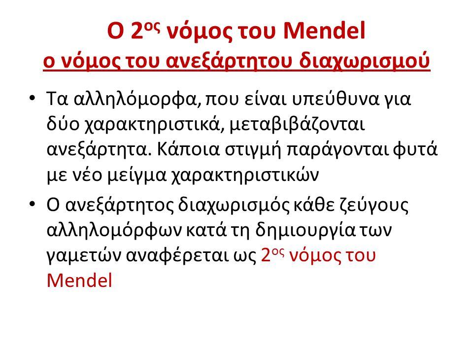 Ο 2ος νόμος του Mendel ο νόμος του ανεξάρτητου διαχωρισμού