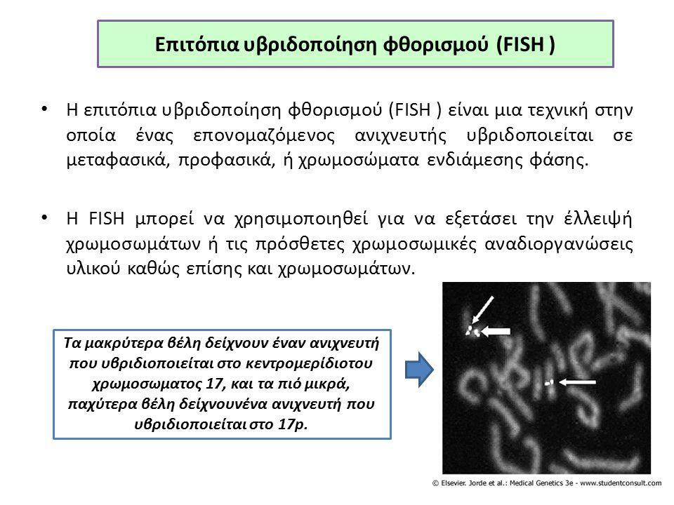 Επιτόπια υβριδοποίηση φθορισμού (FISH )