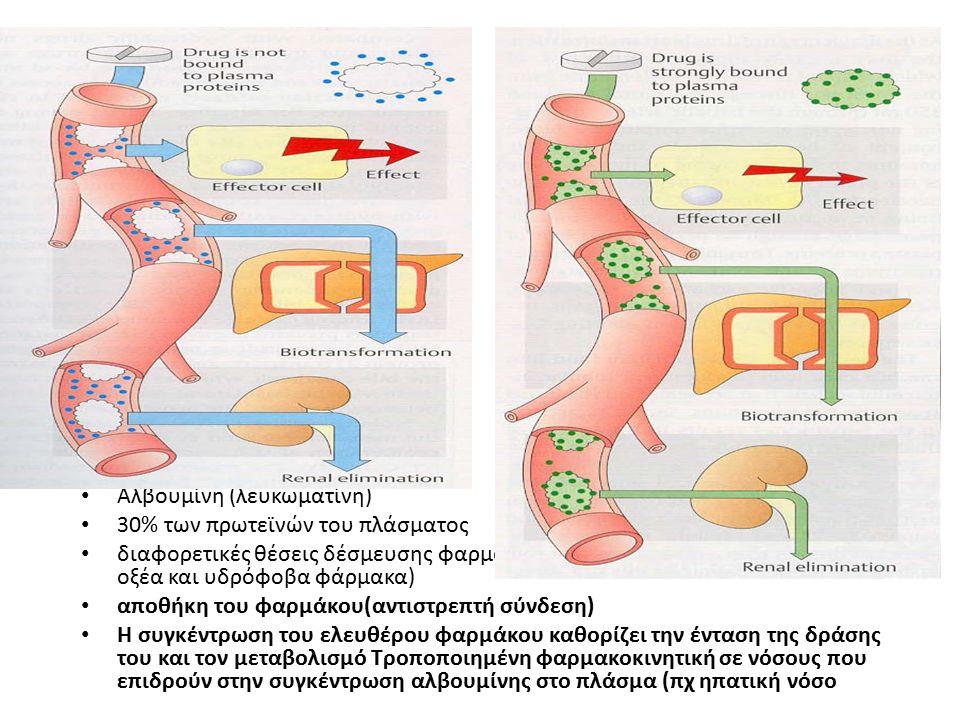 Αλβουμίνη (λευκωματίνη)
