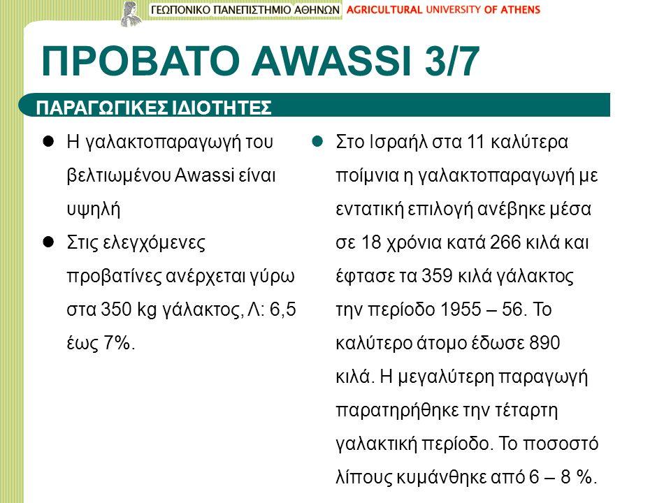 ΠΡΟΒΑΤΟ ΑWASSI 3/7 ΠΑΡΑΓΩΓΙΚΕΣ ΙΔΙΟΤΗΤΕΣ