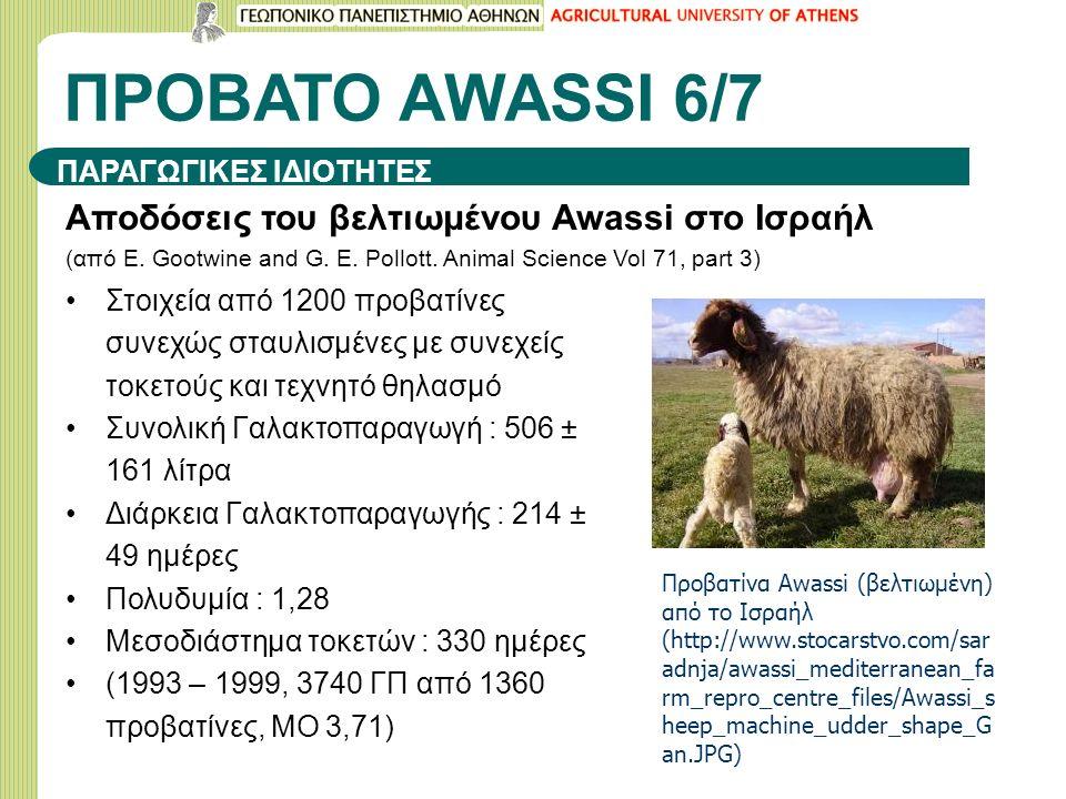 ΠΡΟΒΑΤΟ ΑWASSI 6/7 Αποδόσεις του βελτιωμένου Awassi στο Ισραήλ