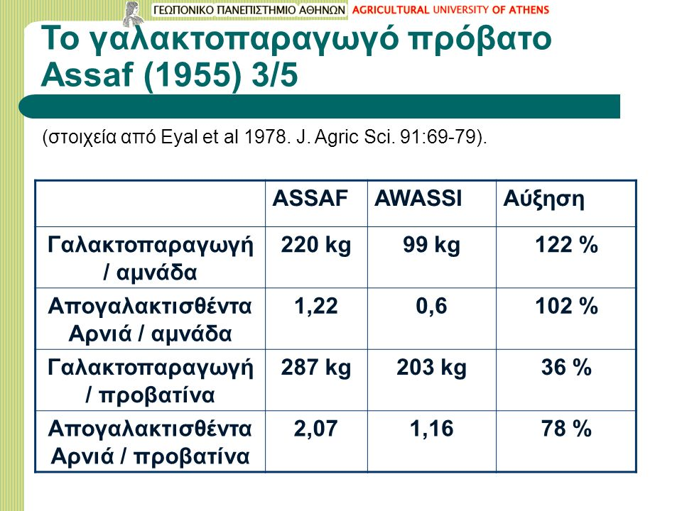 Το γαλακτοπαραγωγό πρόβατο Assaf (1955) 3/5