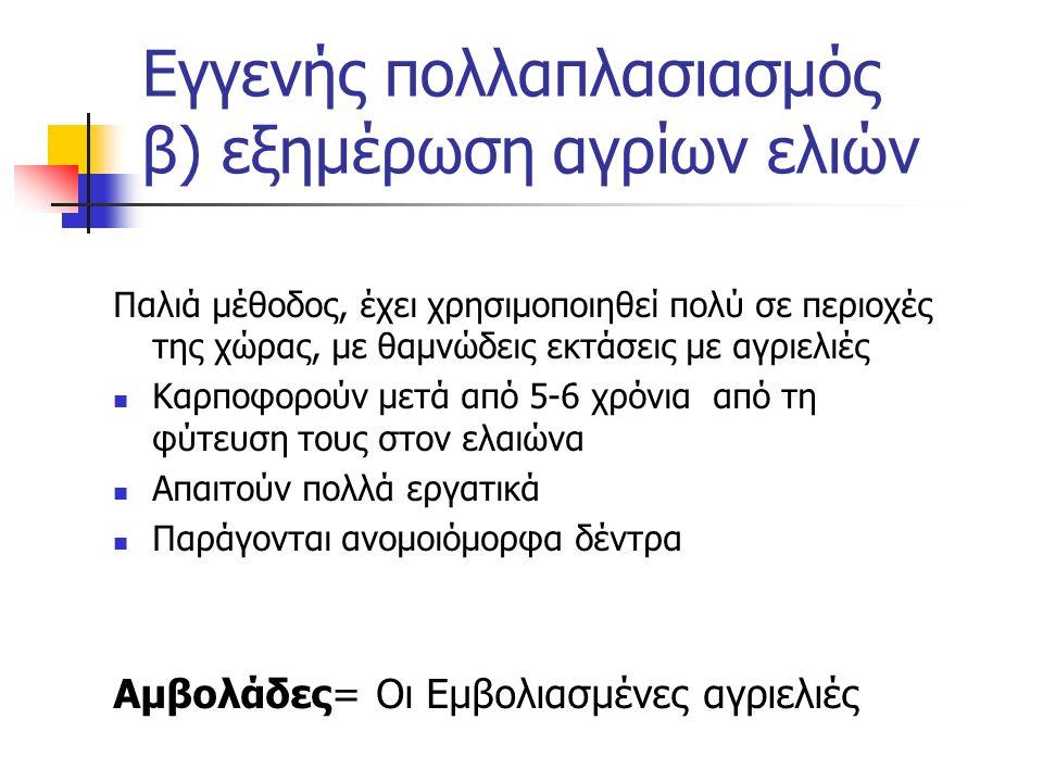 Εγγενής πολλαπλασιασμός β) εξημέρωση αγρίων ελιών