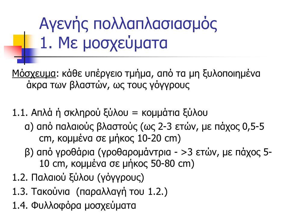 Αγενής πολλαπλασιασμός 1. Με μοσχεύματα