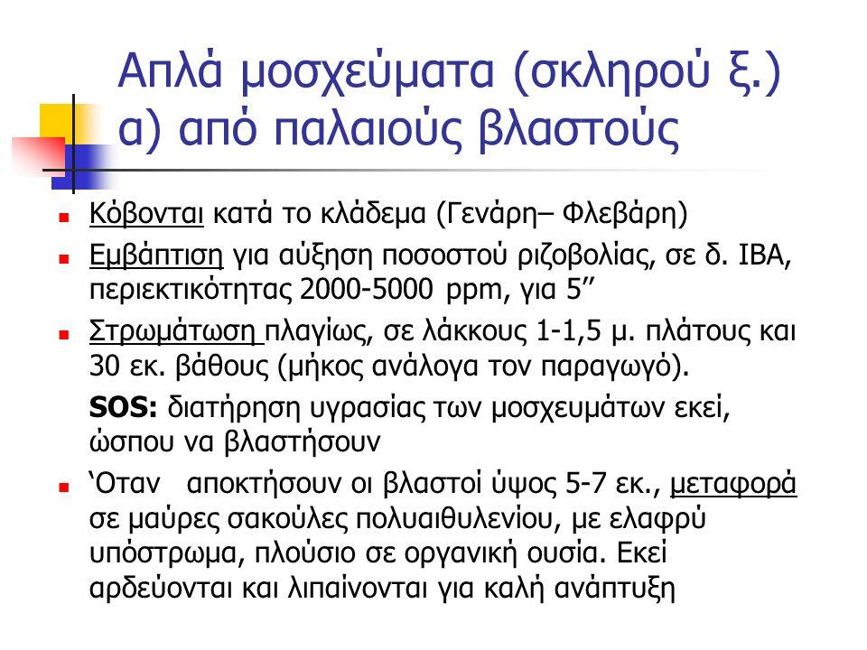 Απλά μοσχεύματα (σκληρού ξ.) α) από παλαιούς βλαστούς