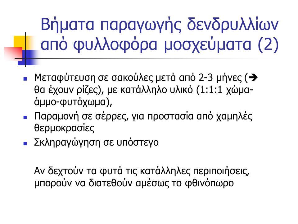 Βήματα παραγωγής δενδρυλλίων από φυλλοφόρα μοσχεύματα (2)