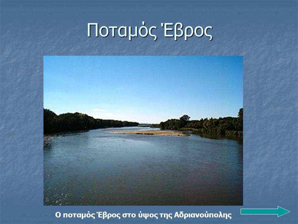 Ο ποταμός Έβρος στο ύψος της Αδριανούπολης