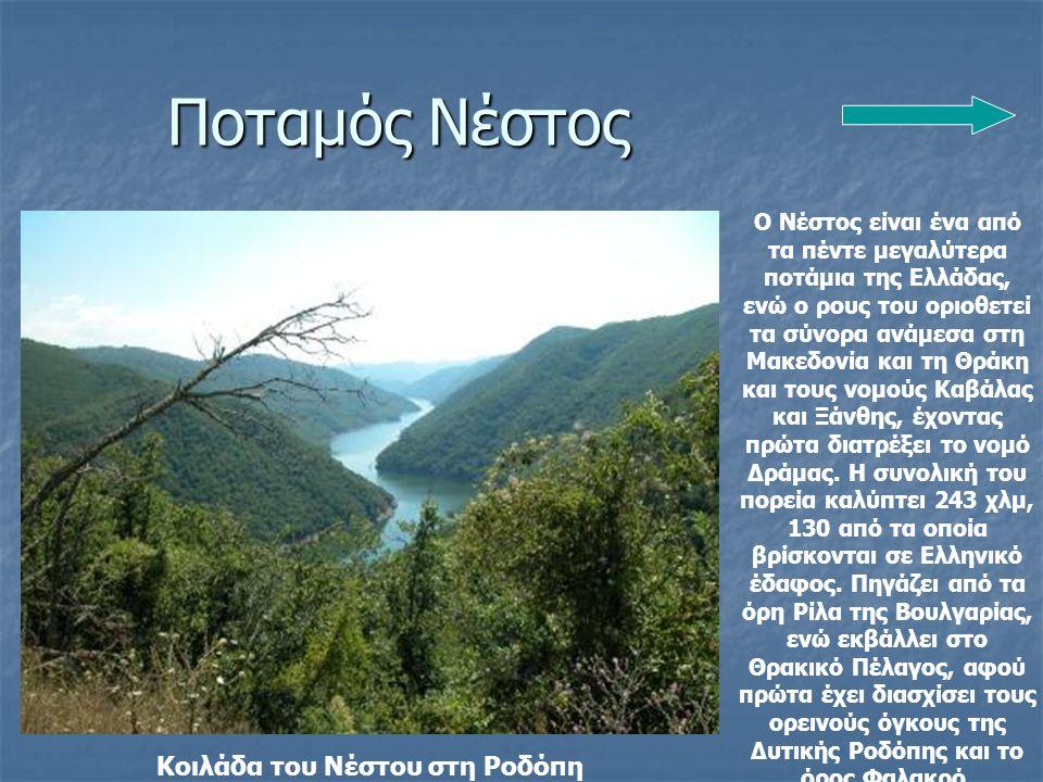 Κοιλάδα του Νέστου στη Ροδόπη