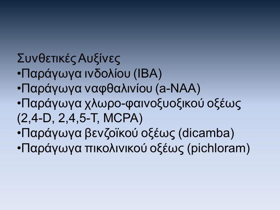 Συνθετικές Αυξίνες Παράγωγα ινδολίου (ΙΒΑ) Παράγωγα ναφθαλινίου (a-NAA) Παράγωγα χλωρο-φαινοξυοξικού οξέως (2,4-D, 2,4,5-T, MCPA)