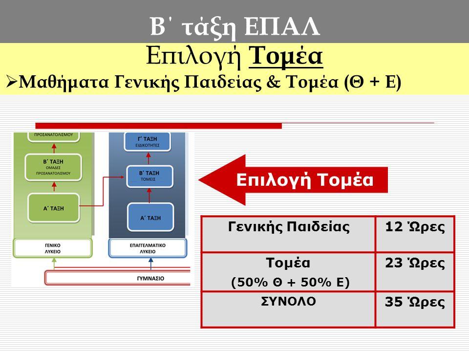 Β΄ τάξη ΕΠΑΛ Επιλογή Τομέα Μαθήματα Γενικής Παιδείας & Τομέα (Θ + Ε)