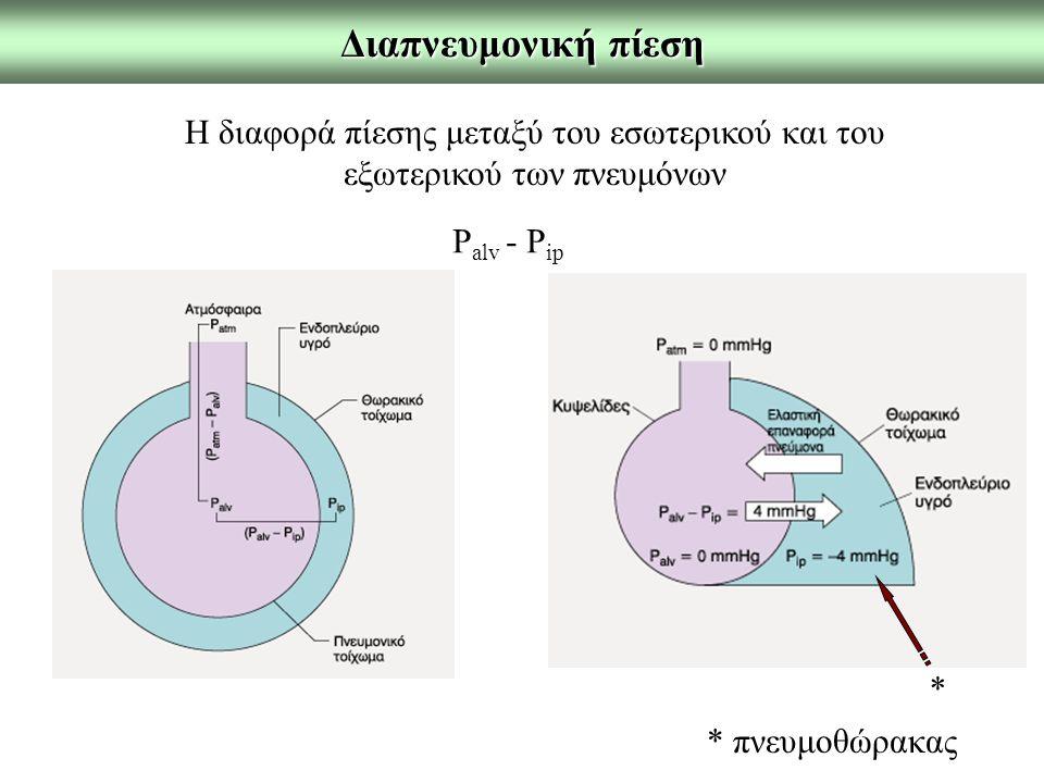 Διαπνευμονική πίεση Η διαφορά πίεσης μεταξύ του εσωτερικού και του εξωτερικού των πνευμόνων. Palv - Pip.