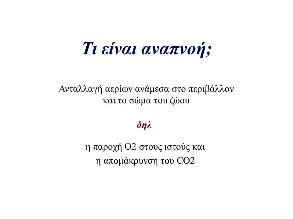 η παροχή Ο2 στους ιστούς και η απομάκρυνση του CO2