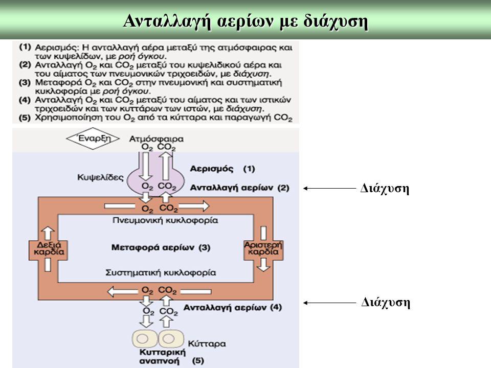 Ανταλλαγή αερίων με διάχυση