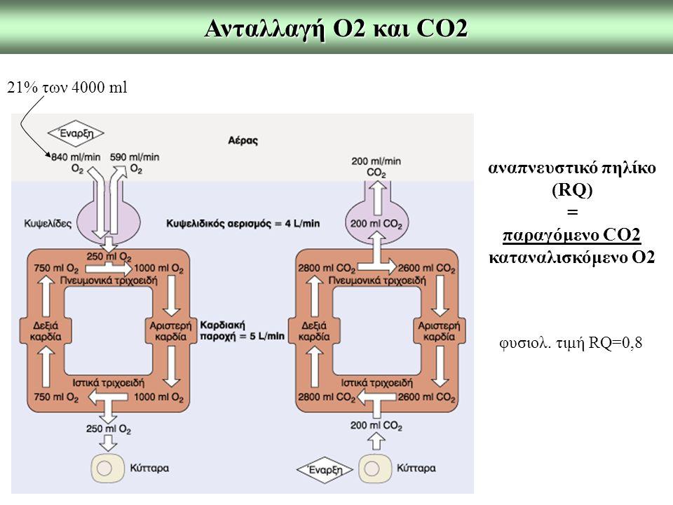 αναπνευστικό πηλίκο (RQ)