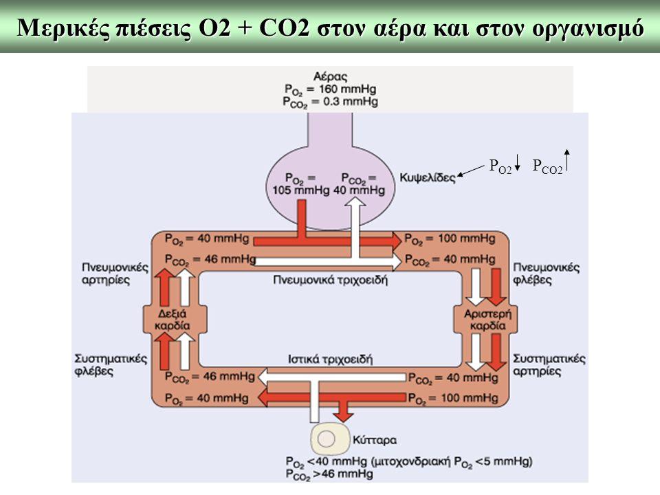 Μερικές πιέσεις Ο2 + CO2 στον αέρα και στον οργανισμό
