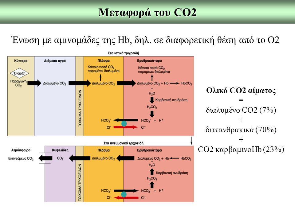 Μεταφορά του CO2 Ένωση με αμινομάδες της Hb, δηλ. σε διαφορετική θέση από το O2. Ολικό CO2 αίματος.