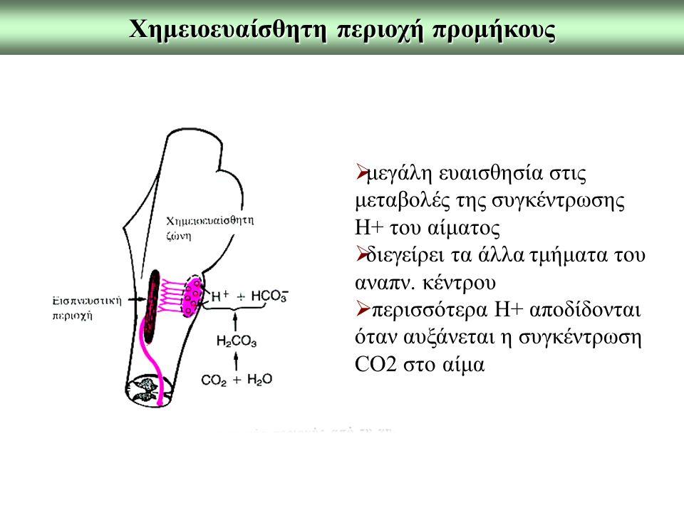 Χημειοευαίσθητη περιοχή προμήκους