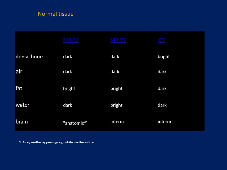 air fat water brain interm. Normal tissue MR-T1 MR-T2 CT dense bone