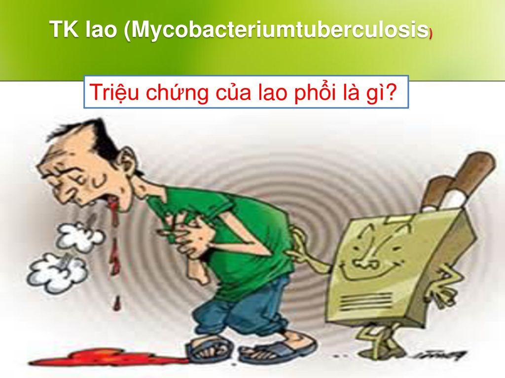 TK lao (Mycobacteriumtuberculosis)
