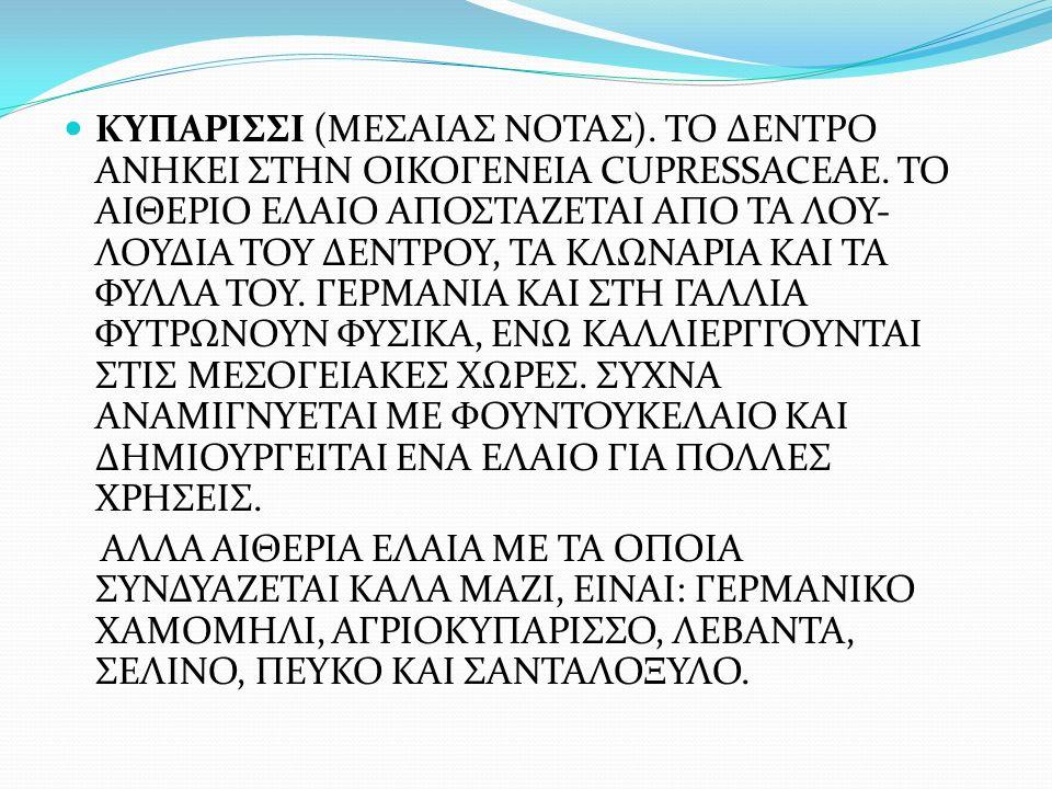 ΚΥΠΑΡΙΣΣΙ (ΜΕΣΑΙΑΣ ΝΟΤΑΣ)