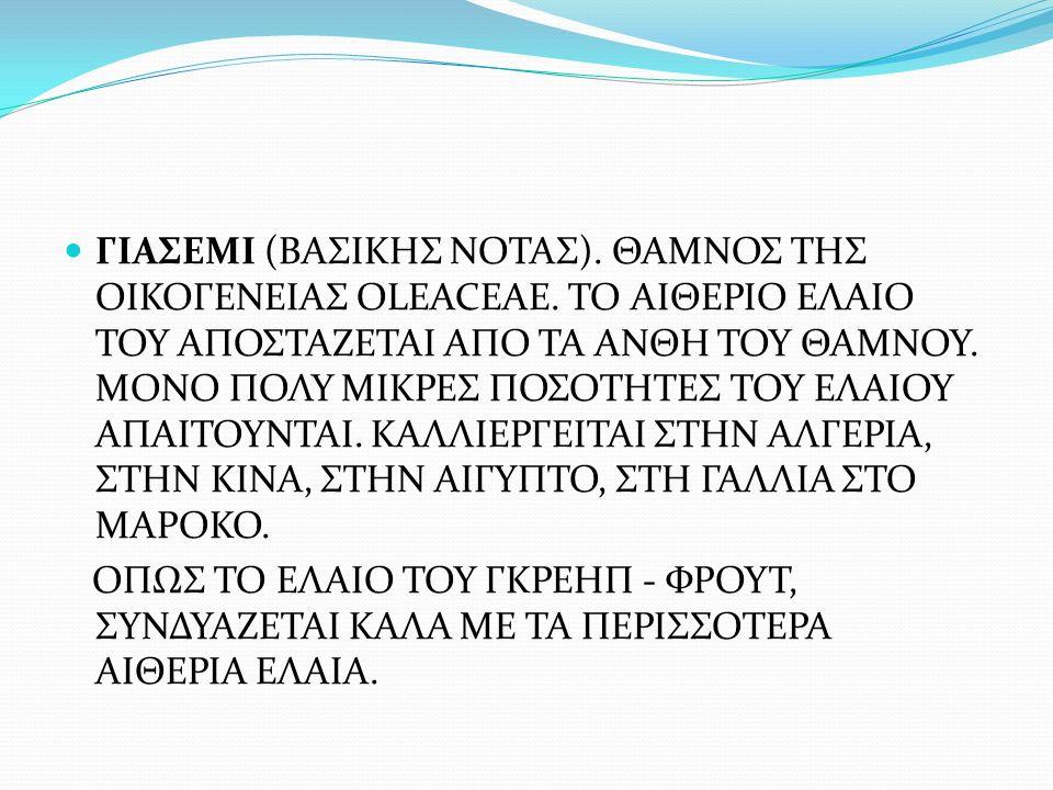ΓΙΑΣΕΜΙ (ΒΑΣΙΚΗΣ ΝΟΤΑΣ). ΘΑΜΝΟΣ ΤΗΣ ΟΙΚΟΓΕΝΕΙΑΣ OLEACEAE