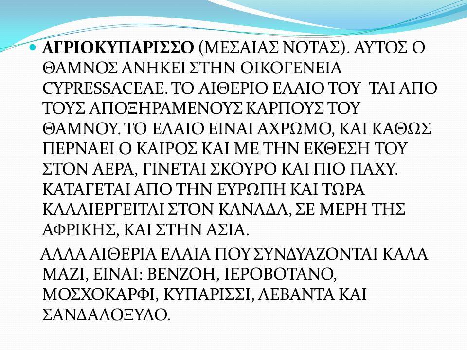 ΑΓΡΙΟΚΥΠΑΡΙΣΣΟ (ΜΕΣΑΙΑΣ ΝΟΤΑΣ)