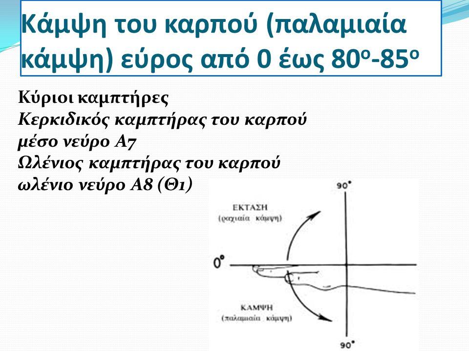 Κάμψη του καρπού (παλαμιαία κάμψη) εύρος από 0 έως 80ο-85ο