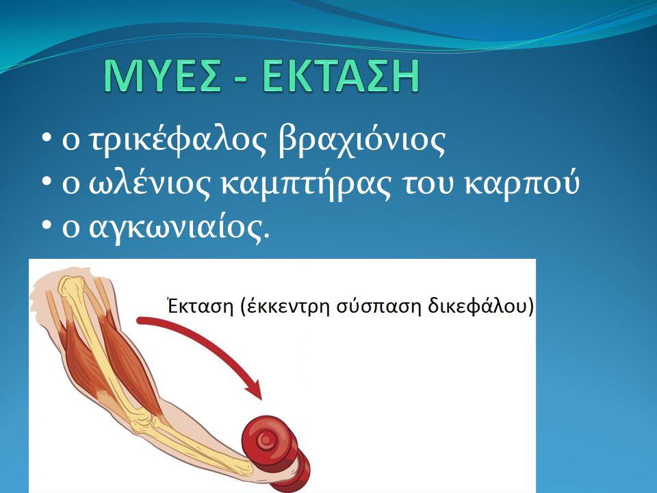 ΜΥΕΣ - ΕΚΤΑΣΗ ο τρικέφαλος βραχιόνιος ο ωλένιος καμπτήρας του καρπού