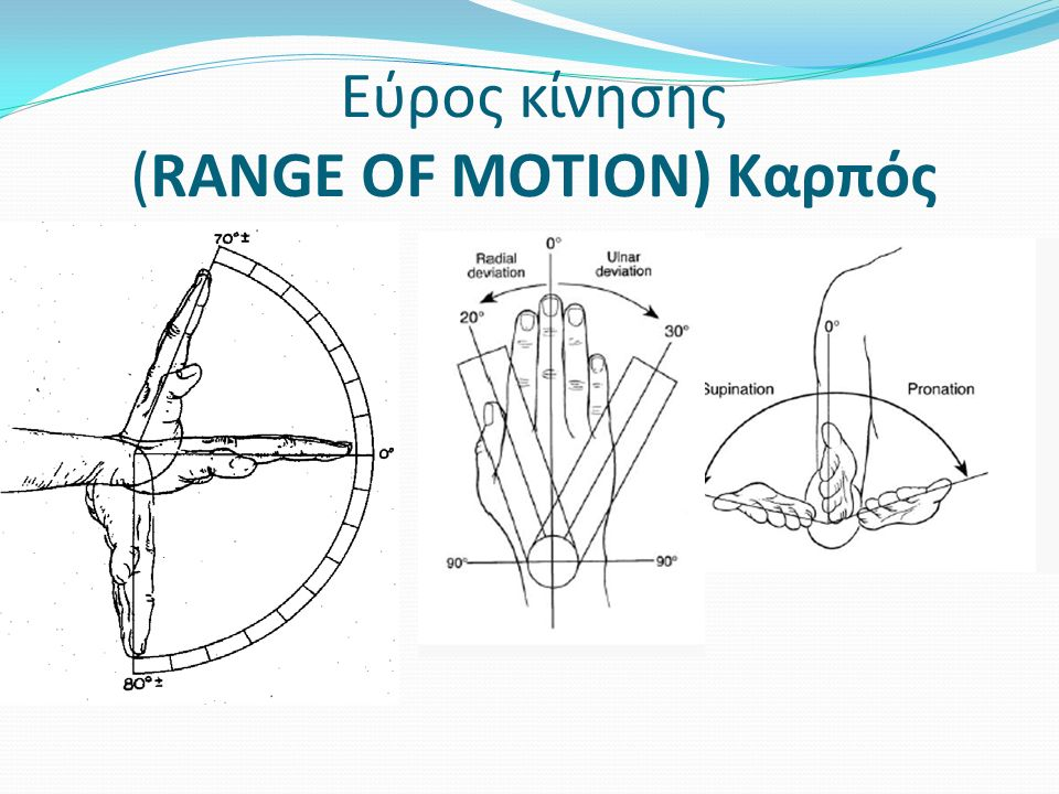 Εύρος κίνησης (RANGE OF MOTION) Καρπός