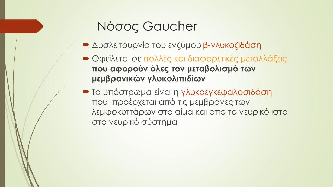 Νόσος Gaucher Δυσλειτουργία του ενζύμου β-γλυκοζιδάση