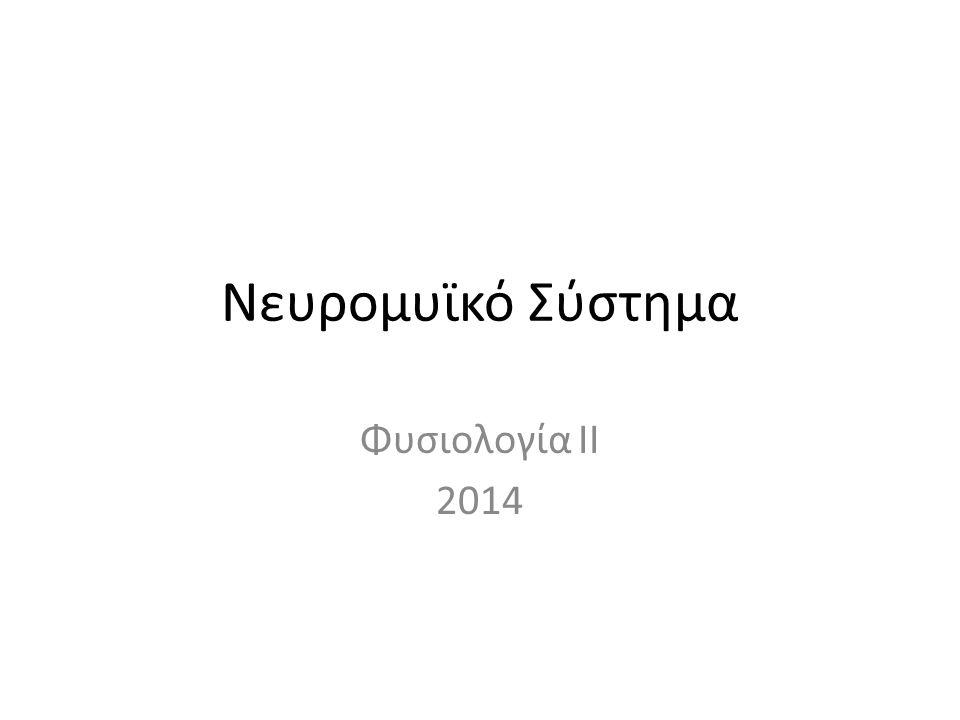 Νευρομυϊκό Σύστημα Φυσιολογία II 2014